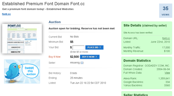 Domain Auction Screenshot