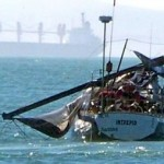 whale trashes boat 2