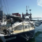 whale trashes boat 3
